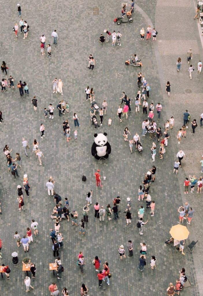 People gathered around a Panda mascot
